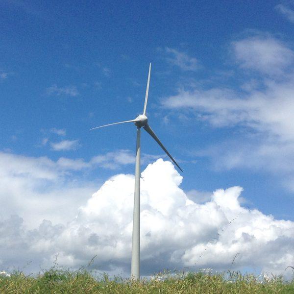 Les éoliennes des ailes des crêtes